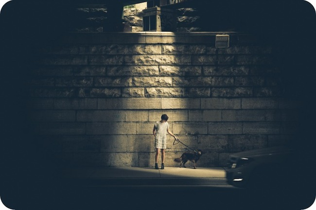 man walking dog in dark illuminated by light