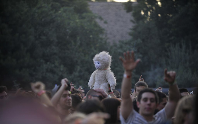 image of an audience at a concert, with a weird stuffed animal rising above the masses