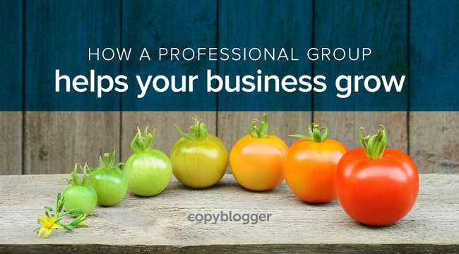 How a professional group helps grow your business