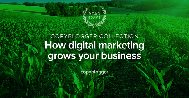 3 Resources to Help Your Content-Driven Website Flourish