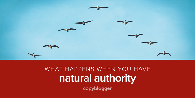 4 Reasons Natural Authority Rocks and 4 Ways to Build It