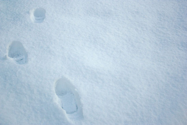 image of footsteps in fresh snow
