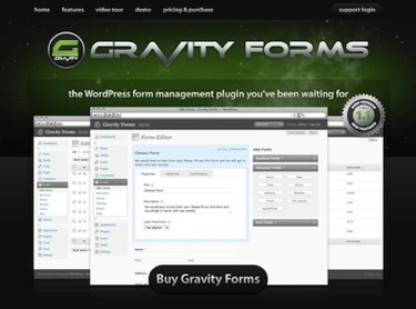 Gravity Forms Review: Worth the Money?