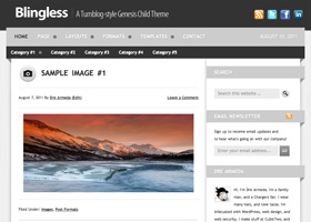 image of the Blingless theme for WordPress