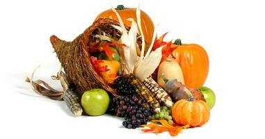 Thanksgiving Link Karma