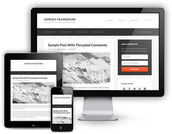 Introducing Genesis 2.0: The Smart Evolution of Your WordPress Website