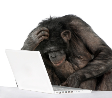 5 Grammar Mistakes that Make You Sound Like a Chimp