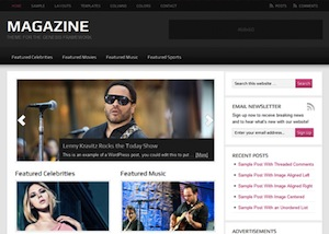 image of the magazine theme for WordPress