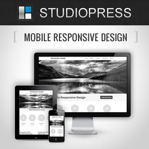 How to Build a Mobile Responsive Website With WordPress