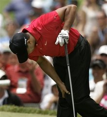 The Tiger Woods Guide to Succeeding Online