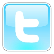 image of a twitter icon