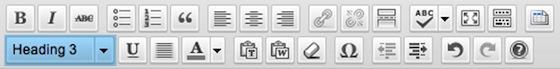 image of wordpress formatting bar