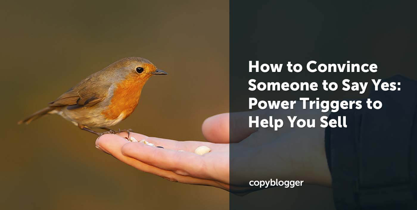 How to Convince Someone to Say Yes: 6 Power Triggers to Help You Sell