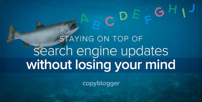 staying on top of search engine updates without losing your mind