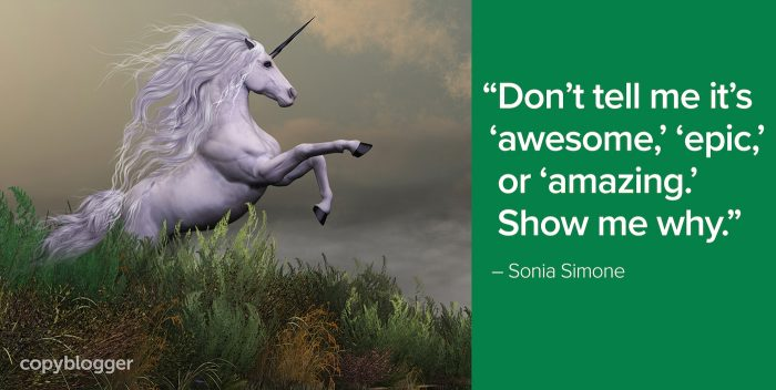 """Don't tell me it's 'awesome,' 'epic,' or 'amazing.' Show me why."" – Sonia Simone"