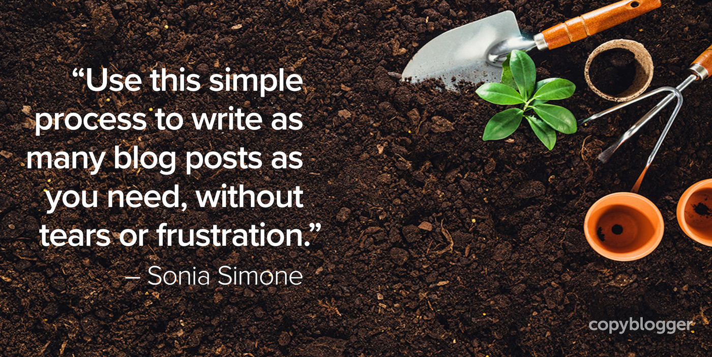 """Use this simple process to write as many blog posts as you need, without tears or frustration."" – Sonia Simone"
