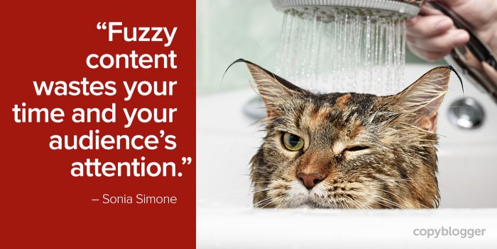 """Fuzzy content wastes your time and your audience's attention."" – Sonia Simone"