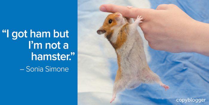 I got ham but am not a hamster