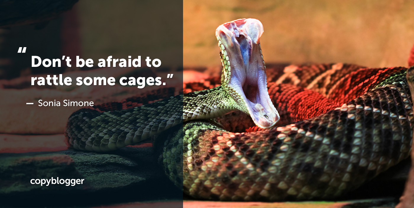 Don't be afraid to rattle some cages. Sonia Simone
